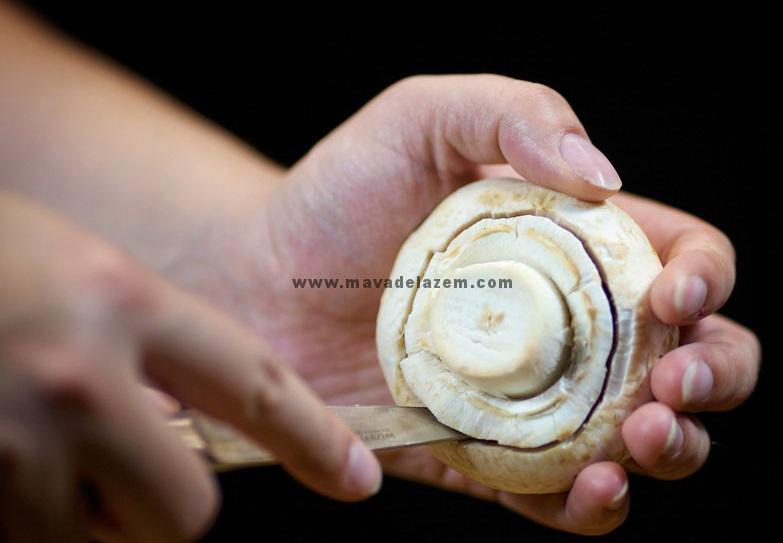 ساقه قارچ را جدا می کنیم